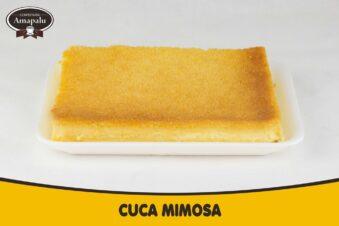 Cuca Mimosa